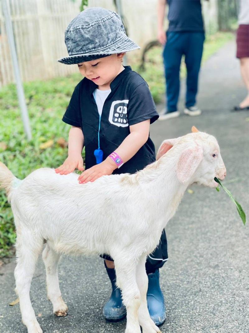 Detrang Farm - Nông trại giáo dục đầu tiên cho trẻ không gian phát triển toàn diện