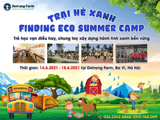 Trại hè: Bước đệm quan trọng trên hành trình phát triển của con trẻ