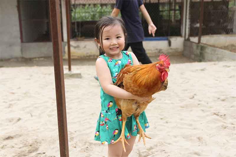 Điều kỳ diệu khi trẻ em được kết nối với động vật thường xuyên